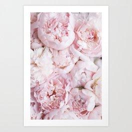 Flower Collection I Art Print