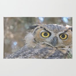 Young Owl at Noon Rug