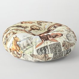Cute Animals // Fourrures by Adolphe Millot XL 19th Century Science Textbook Diagram Artwork Floor Pillow