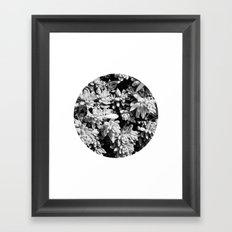 Succulent circle Framed Art Print