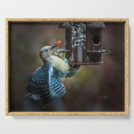 Red-bellied Woodpecker and fruit II Serving Tray