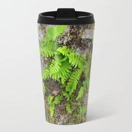 Ferns and stone wall at Culloden Travel Mug