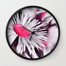 Marquerite white pink 01 Wall Clock