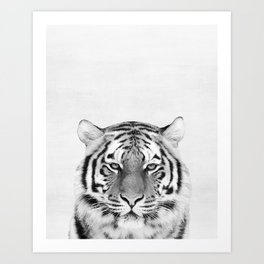 Tiger Peekaboo print Art Print