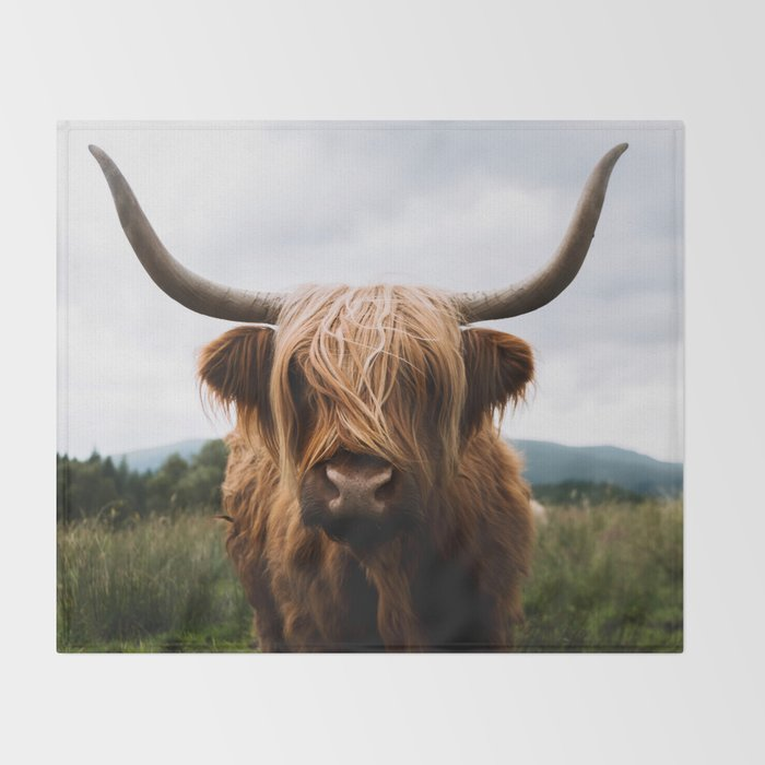 Scottish Highland Cattle in Scotland Portrait II Throw Blanket