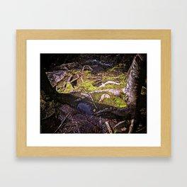 Roots of Love Framed Art Print
