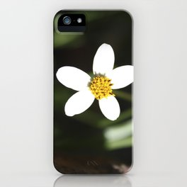 White Flower - Cuzco iPhone Case