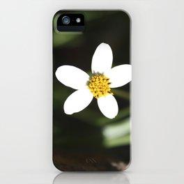 White Flower - Cuzco iPhone Case