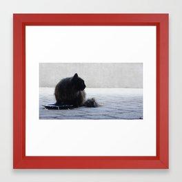 Lucy I Framed Art Print