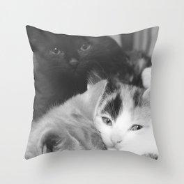 Pile of Kittens Throw Pillow