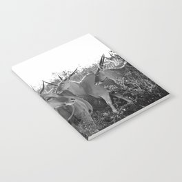Herd of Eland stand in tall grass in African savanna Notebook