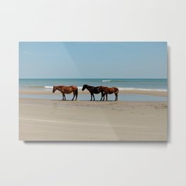 Wild Horses on the Beaches of North Carolina Metal Print