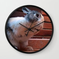 Le Lapin Wall Clock