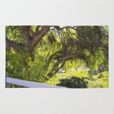 A Tree Next To A White Fence Rug