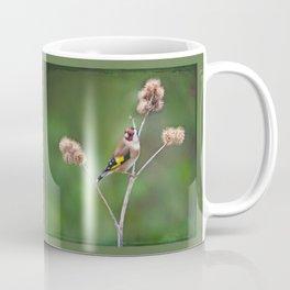 Goldfinch (Carduelis carduelis) Coffee Mug