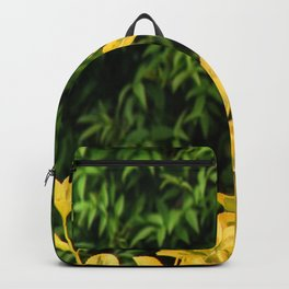 Yellow Against Green Backpack