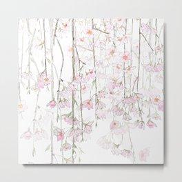 pink cherry blossom spring 2018 Metal Print