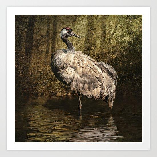 Sand Crane Art Print