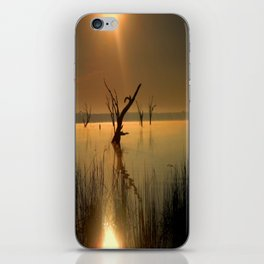 Worshipping Nature iPhone Skin