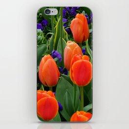 Tulip Field 2 iPhone Skin