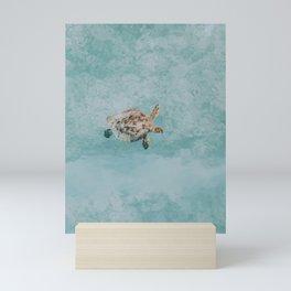 sea turtle vi Mini Art Print