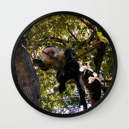 Capuchin Gaze Wall Clock