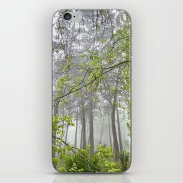 Foggy morning into the dream forest iPhone Skin