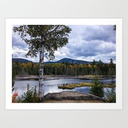 Fall on Moose Bog Art Print