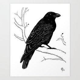 Inky Crow Art Print