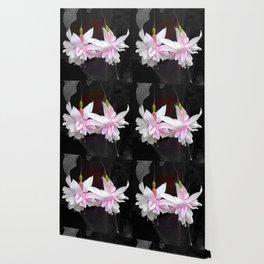 Ballerinas Wallpaper