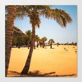 caribbean beach palms Canvas Print