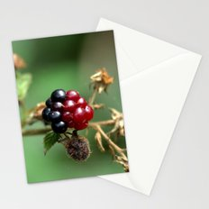 Berry Ripening Stationery Cards