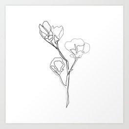 """Botanical Collection"" - Magnolia Flower Print Art Print"