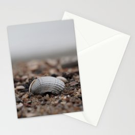 shell on the sandy shore Stationery Cards