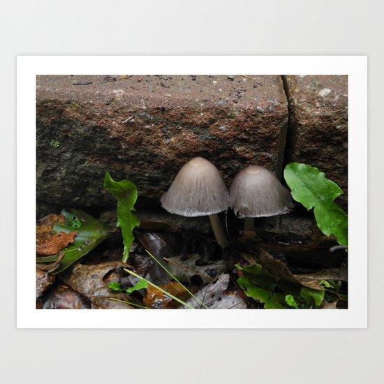 Mushroom Mushroom Art Print