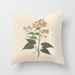 Honesty - botanical Throw Pillow