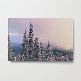 Winter Subalpine Metal Print