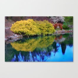 Pond at Ginter Canvas Print
