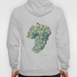 Green Grape Hoody