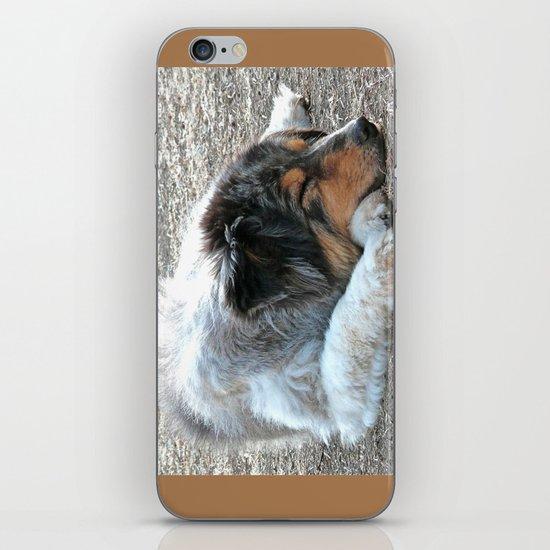Zzzzz iPhone & iPod Skin