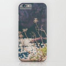 Sparkling Day Slim Case iPhone 6s