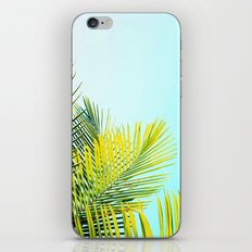 Palm Fronds iPhone Skin