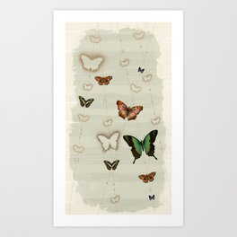 Butterfly Coordinates iii Art Print