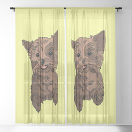 Cute Yorkshire terrier dog with its tongue out - yellow background Sheer Curtain