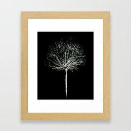 Slim Twig Framed Art Print