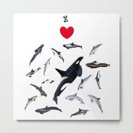 I love dolphins Metal Print
