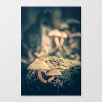 mushrooms Canvas Prints featuring mushrooms by Koka Koala