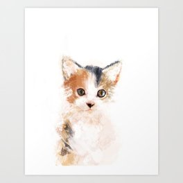 Baby Cat, Mio Art Print