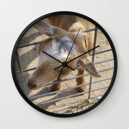 It really gets my goat when all those people stare at me Wall Clock