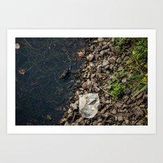 The Frog and the Trash Art Print